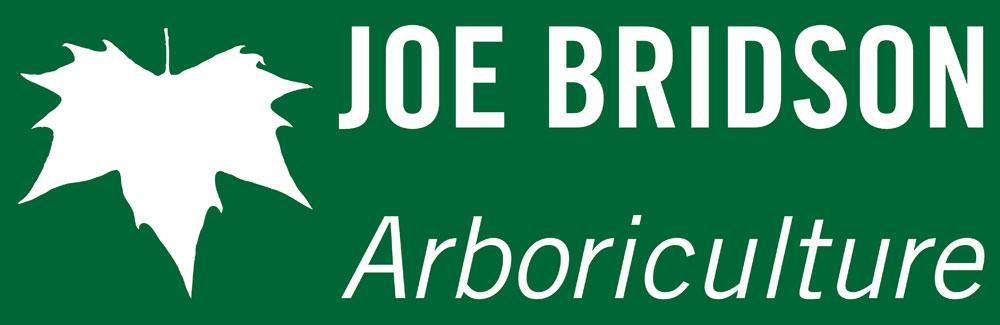 Joe Bridson